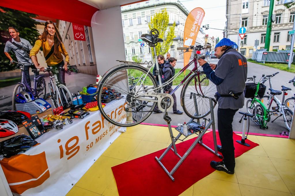 20160428 Radfahren waehrend der U4 Sperre_Foto Mobilitaetsagentur Christian Fuerthner (52)