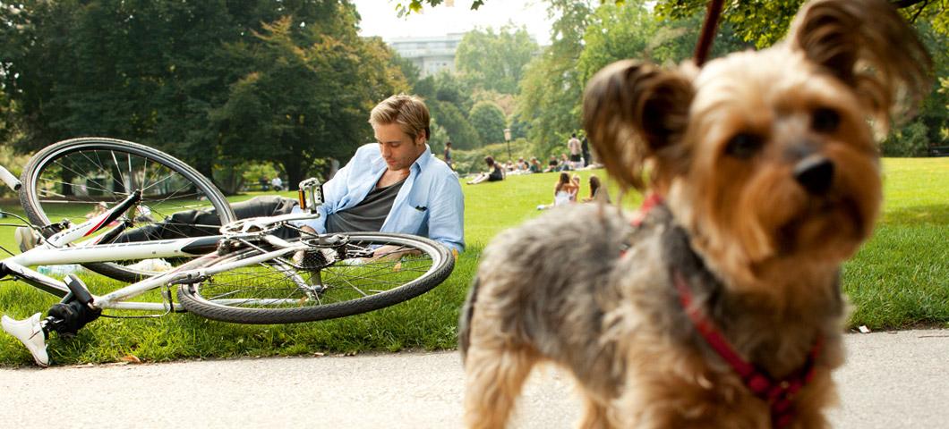 Ein junger Mann liegt neben seinem Rad in der Wiese und liest.