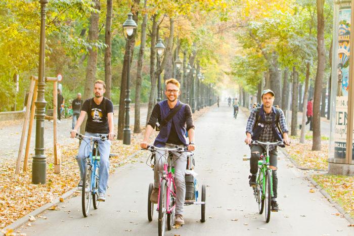 Drei Radfahrer fahren am Radweg unter herbstlich gefährbten Bäumen. Foto von Peter Provaznik