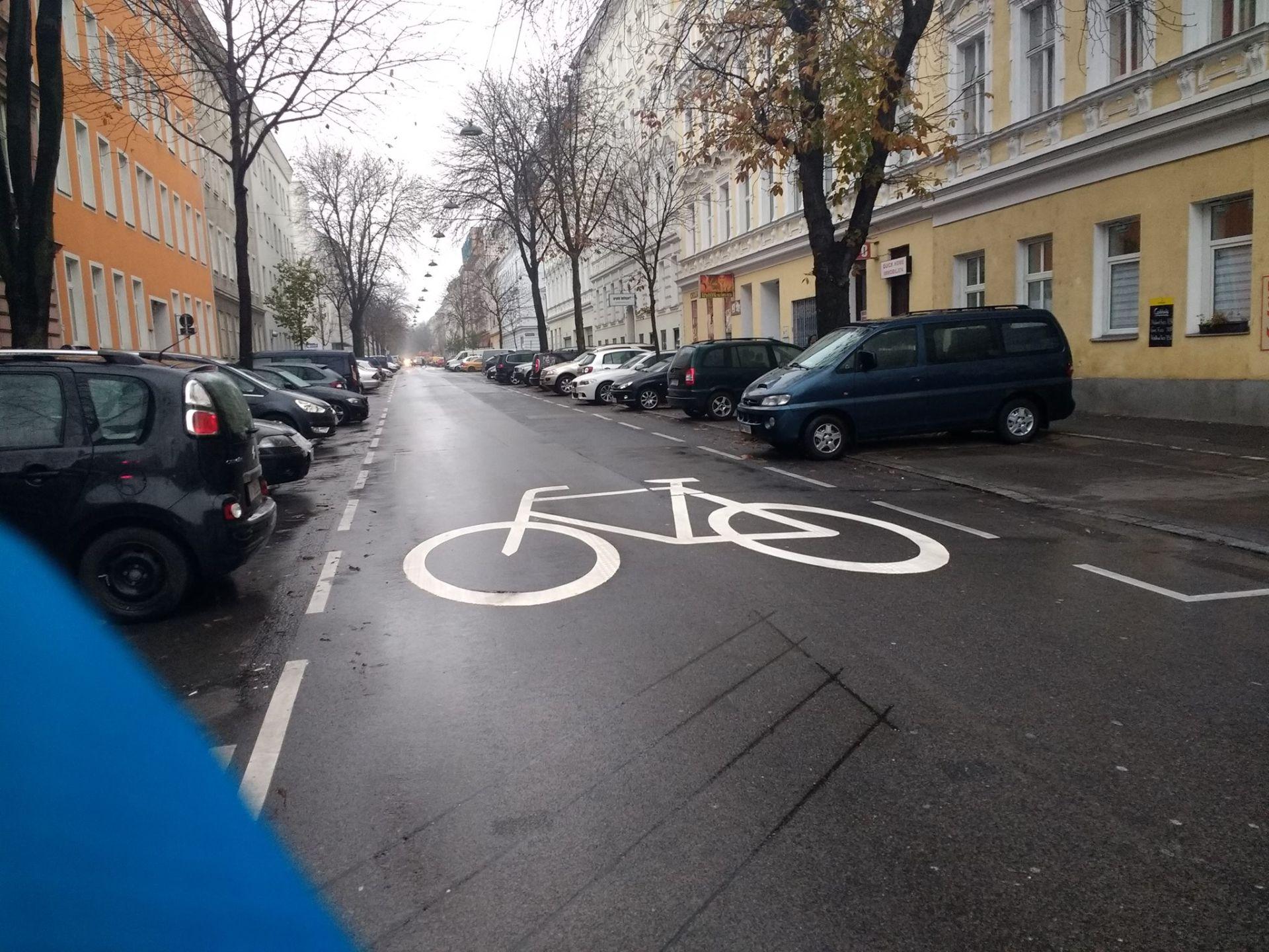 Hasnerstrasse_Fahrradpiktogramme_Foto von Victoria Ser